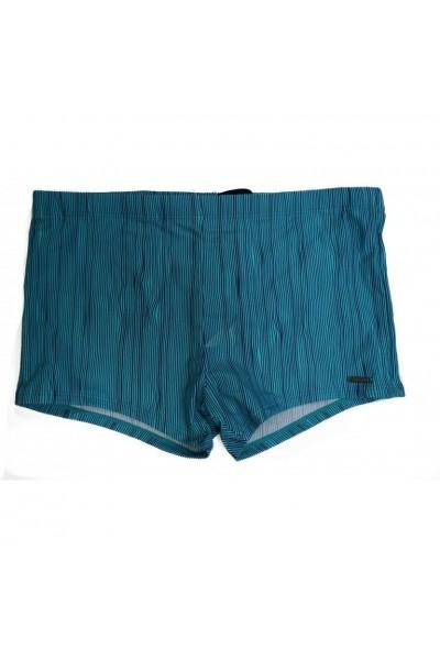 Шорты мужские пляжные ATLANTIC KMS-281 - LeConfort